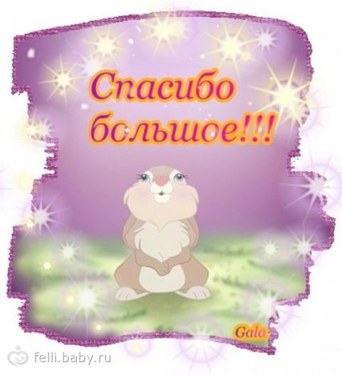 http://cs21.babysfera.ru/1/b/0/0/58009994.106659290.jpeg
