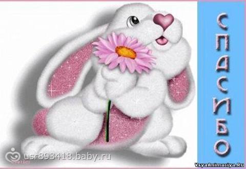 http://cs21.babysfera.ru/5/3/5/5/118935295.119574186.jpeg