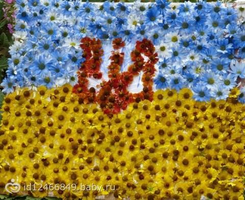 Идеи ко дню независимости украины для
