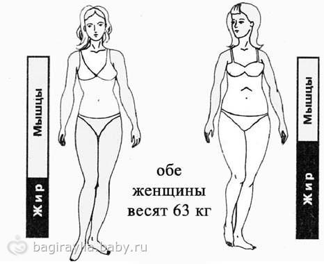 Программа передач о похудении