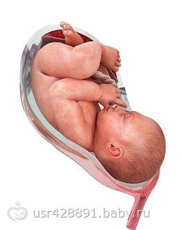 Беременность 40-41 недель вторые роды