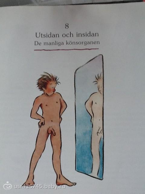 Шведская книжка о сексе детям 3