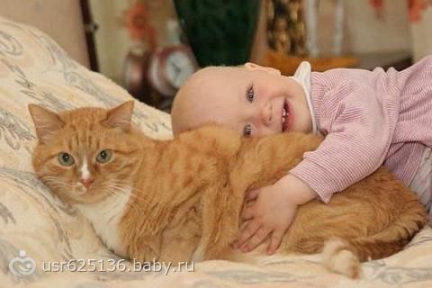 Мысли кота :)