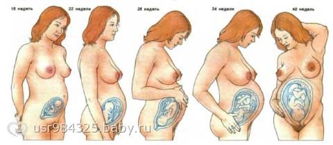 Применение Ношпы при беременности в 1 2 и 3 триместре