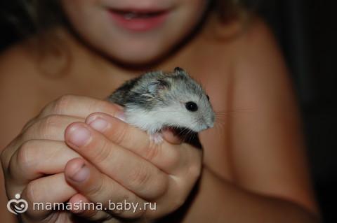 общение с детьми)))