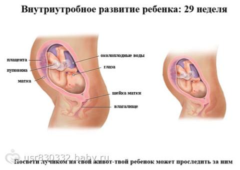 38 неделя беременности геморрой