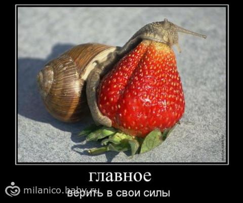 уроки техники мытья пола))